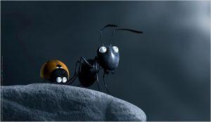 la petite  Coccinelle et la   son amie  la fourmi noire