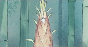 l'éclosion de  la petite  princesse  de  Bambou