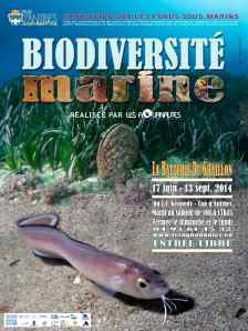 Aquanautes - Affiche 30x40 copie
