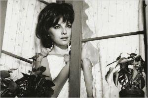 Virna Lisi dans  Sigoroe  e Signori (  Ces Messieurs Dames ) , Palme d'or   Cannes