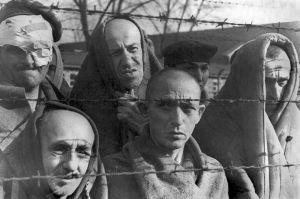 Survivants d'Auschwitz