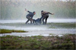 Scène de traque dans les  marais  sous la tempête...