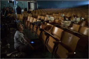 les spectateurs d'ne salle de cinéma ...avant la creation de l'homme.