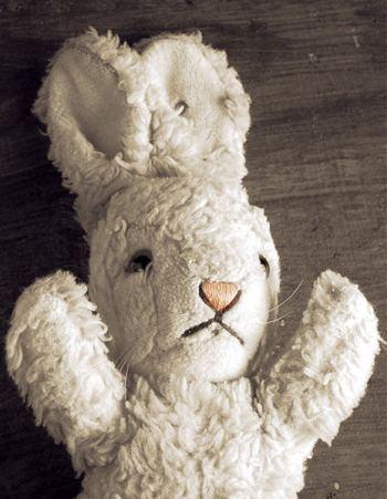 lapin-blanc-lapin-rouge